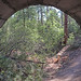 Tunnel Vision Trail