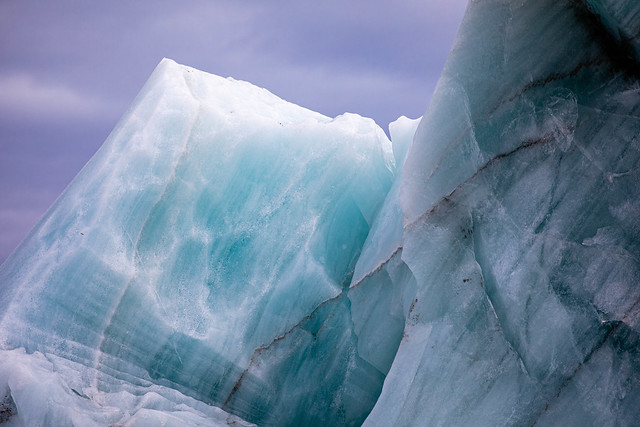 Arctic nature around Longyearbyen and Svalbard (Norway)
