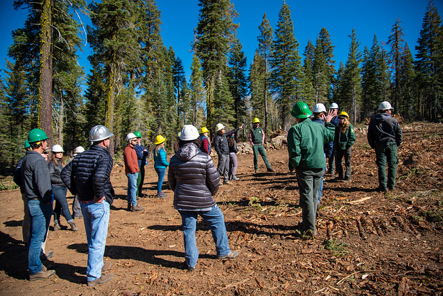 North Yuba Forest Partnership uses a Forest Resilience Bond to finance forest restoration