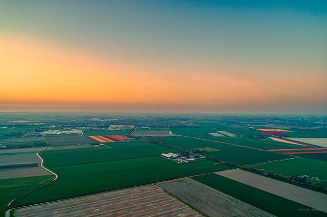 Dutch spring landscape at sunset.