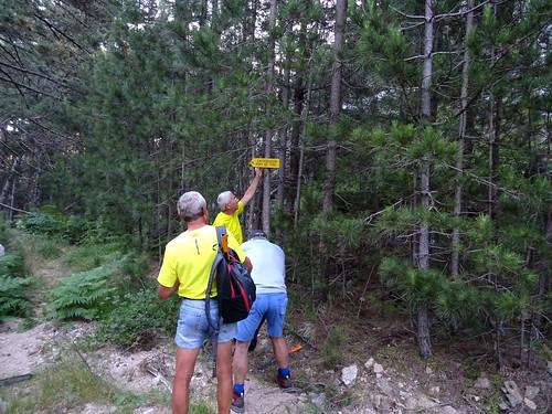 A l'extrémité du Chemin RG du Finicione : panneau sur la piste forestière