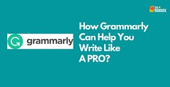 How Grammarly Can Help You Write Like A Pro