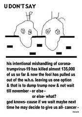 TrumpVirus-19 by hhvision