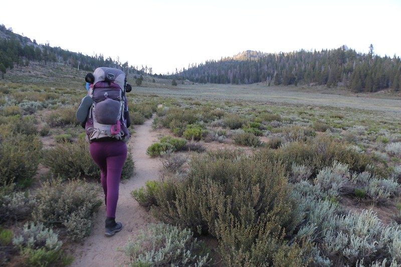 We headed uphill in Beck Meadow on the PCT toward Crag Peak and Crag Pass