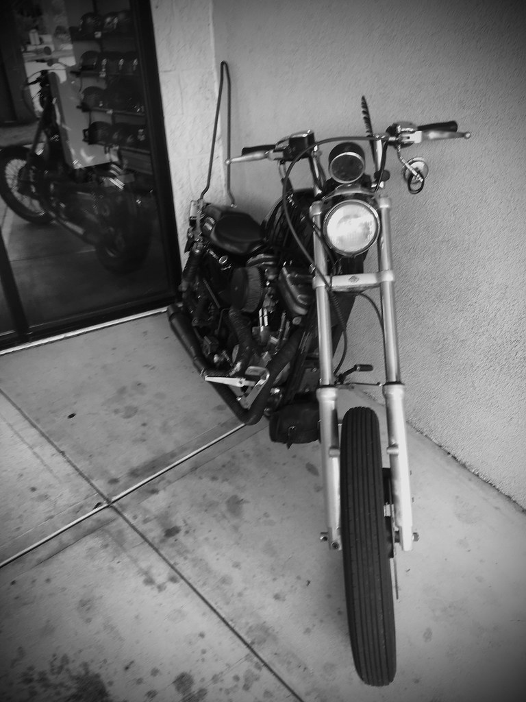 190/365 Bikes of a feather...