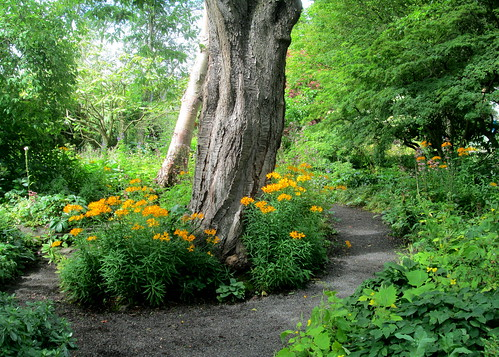 Pathway, Branklyn Garden, Perth, Scotland