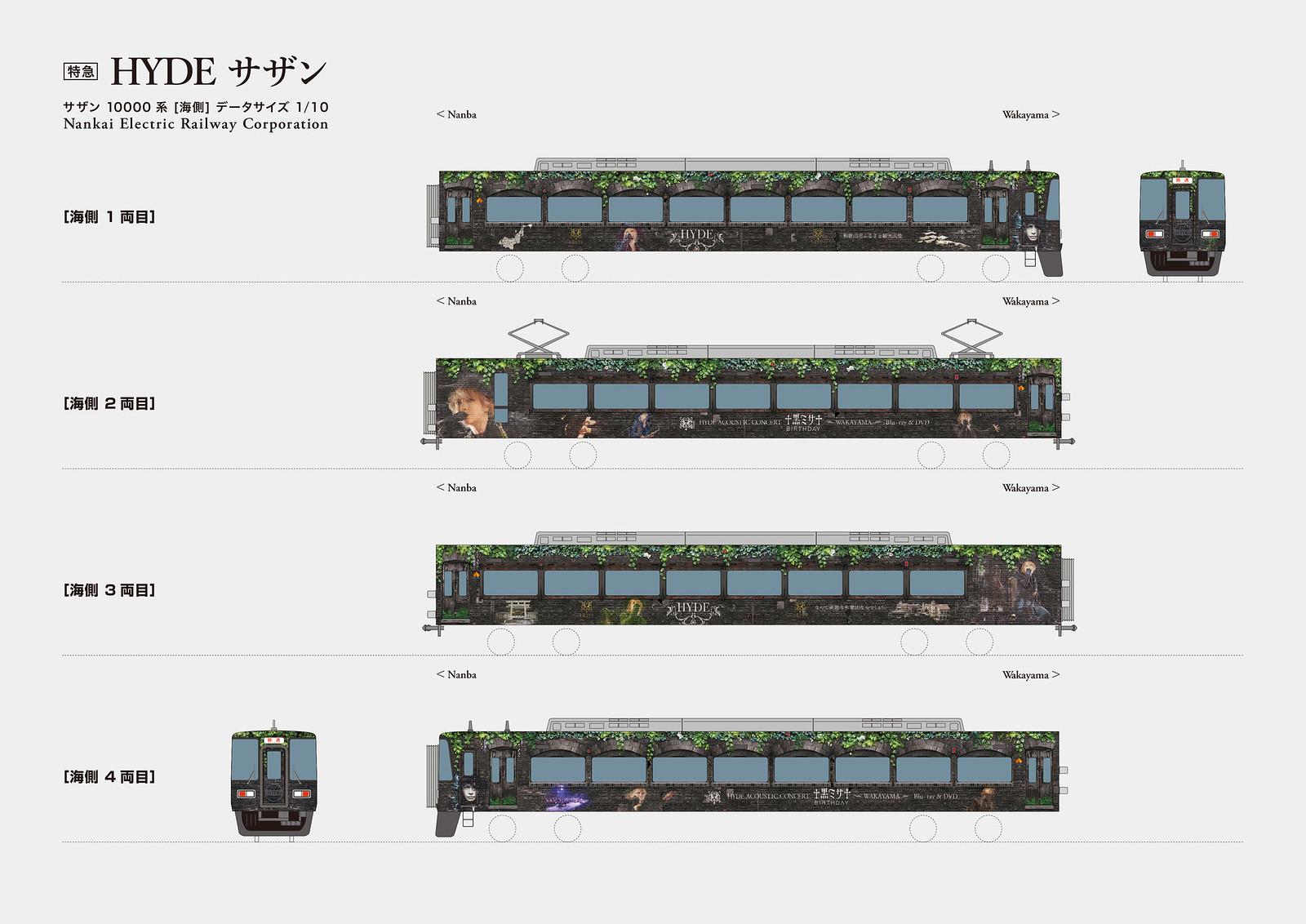 南海電鉄 特急 HYDE サザン