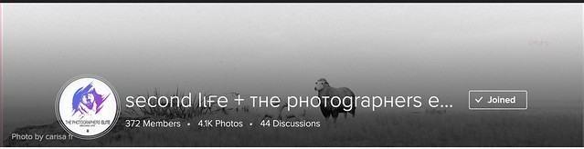 You Explore Prints Photos, people, or groups Upload Photo by carisa franizzi ѕecond lιғe + тнe pнoтograpнerѕ elιтe (op