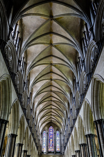 cathedral salisbury interior building architecture england sony
