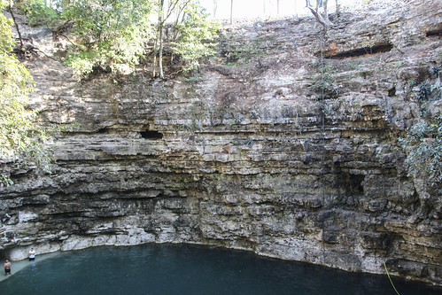 Walls of the cenote, Mexico's Yucatán Peninsula
