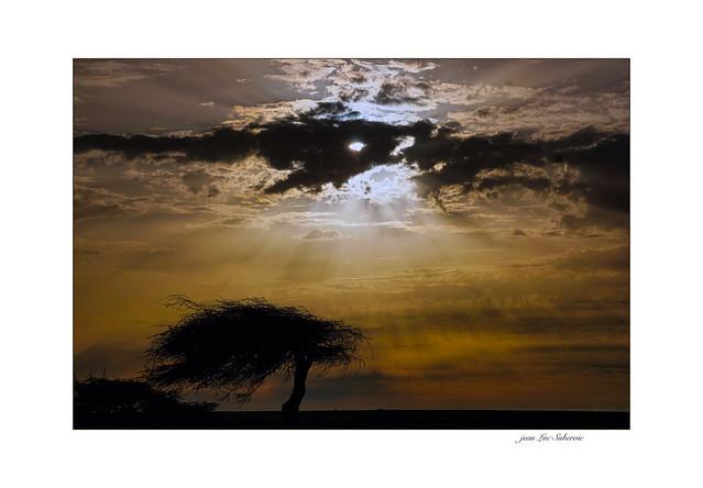 Fin d'après midi sur le Sahara