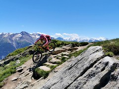 Trail Moosfluh - Bettmeralp