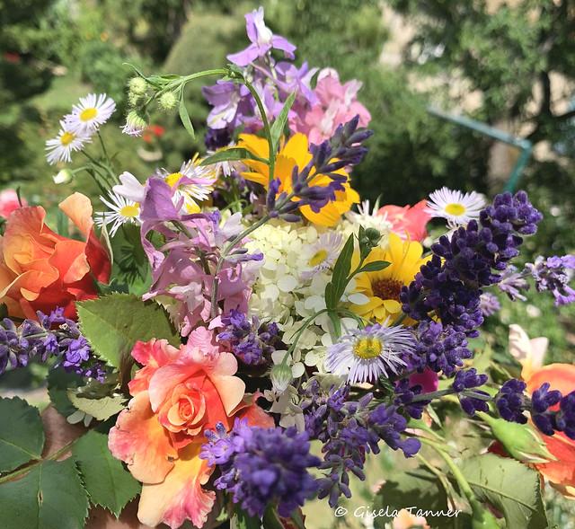 Ein Gartenblumenstrauß