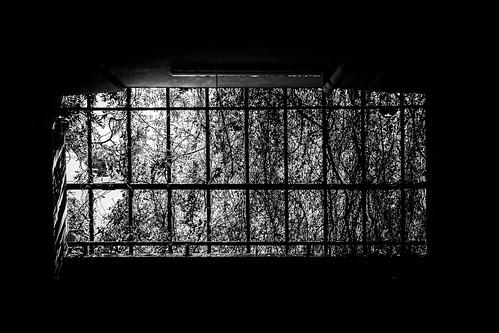Natur Prison