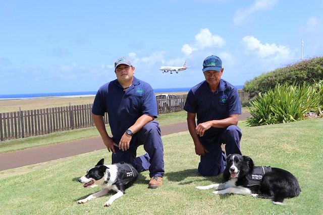 Canine Quade and handler Cliff Silva and canine Quinn and handler Cesar Trinidad