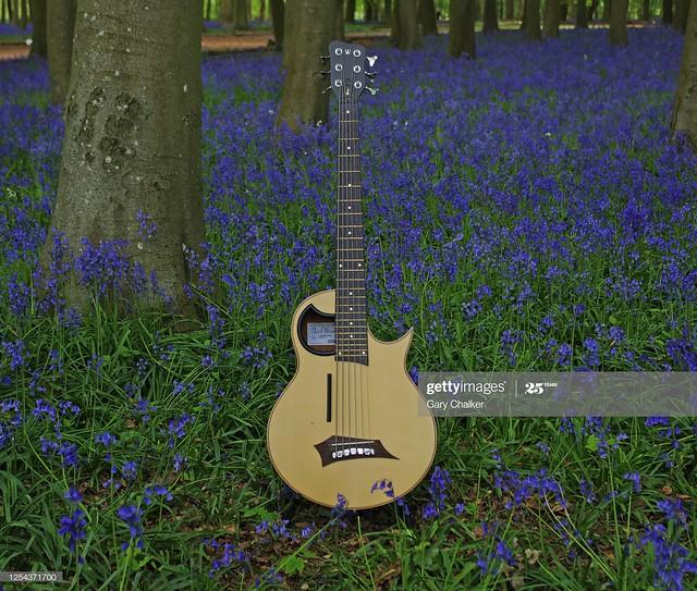 Warwick Alien 6 string electro  acoustic bass guitar
