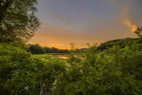 canon eos 5ds 5dsr rokinon 14mm 24 sp wide angle landscape hdr sns green blue orange sky sunset sunsets wing lake minnetonka minnesota mn horizon summer hennepin county water lilypad lily cloud evening peaceful trees