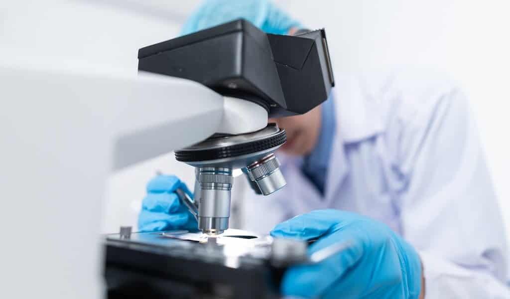 les-salmonelles-et-les-maladies-de-parkinson-et-Alzheimer(1)