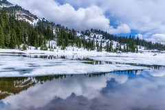 Tipsoo Lake Reflection
