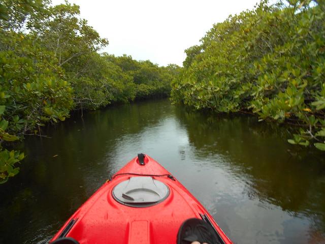 Tues Kayak AM 1 SEPT 2020