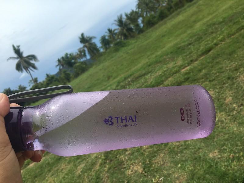 タイ航空を応援