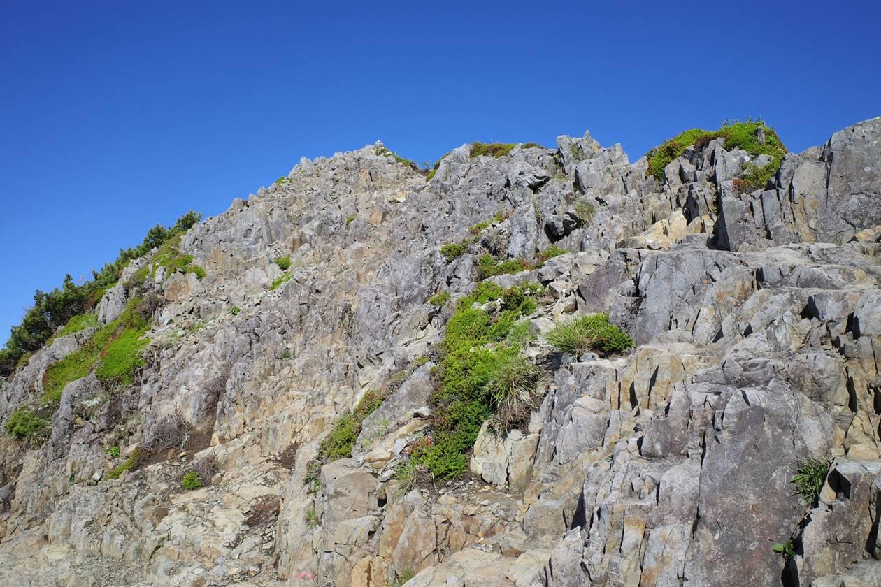 ギボシ山頂へ