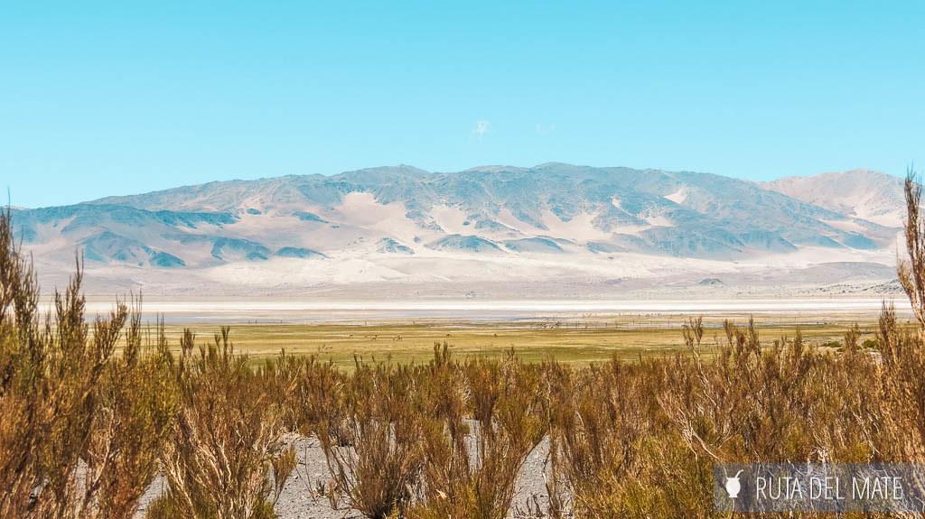 Laguna Blanca en Catamarca
