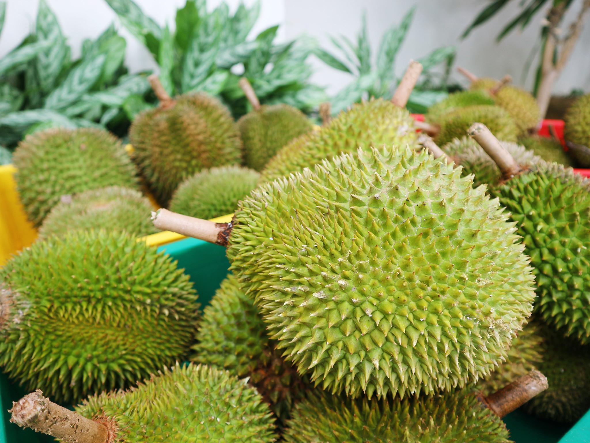 Oakwood Hotel & Residence KL - Durian ON-THE-GO_1
