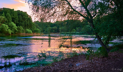 landscape nature travel composition outside outdoor scenery interesting flickr travelphotography fujifilm mirrorless photography oaklandlake newyorkcity newyork sunset lake x100v