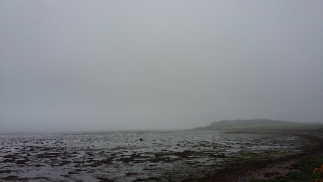 Misty Moray Firth, Allanfearn, Highlands, June 2020