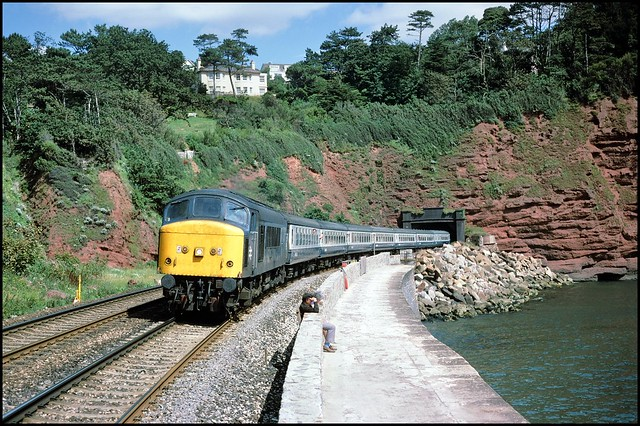 Holcombe, Parsons Tunnel 45145 (08.29 Nottingham - Paignton) 16/08/86.