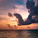 maldives-13    (tags:    canonef2470mmf28 canon1dxmarkii cococollection eau exterieur hdr ile landscape maldives outdoor paradis paradise paysage voyage water    )