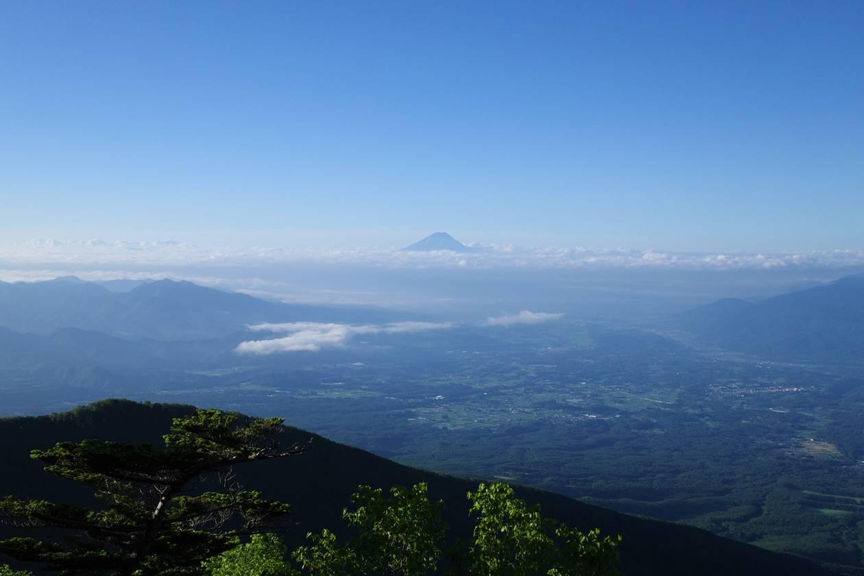 編笠山登山道から眺める富士山