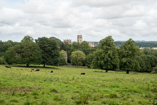 Durham Cathedral | by cannam