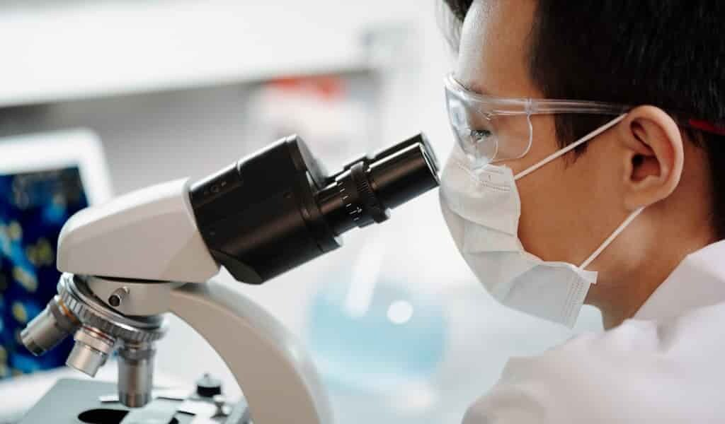 des-enzymes-antibactériennes-dérivées-des-phages
