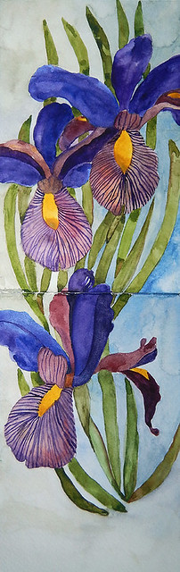 My sketch book, a watercolour painting of purple Flag Irises by the water