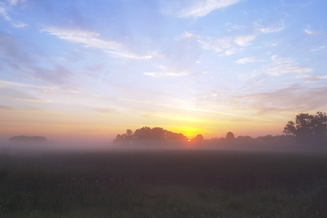 Grassy Meadows Marsh