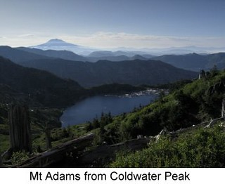 Mt Adams from Coldwater Peak.