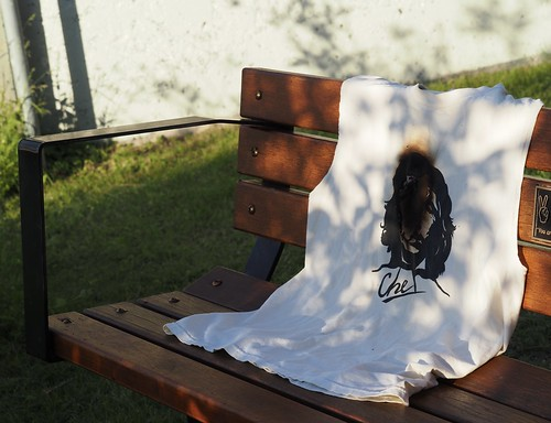 no idea what this burnt  t-shirt on a bench means | by PurpleNightlily