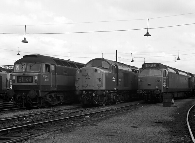 Brush Type 4 D1744, EE Type 4 233 and 'Hoover' D449 20-07-69