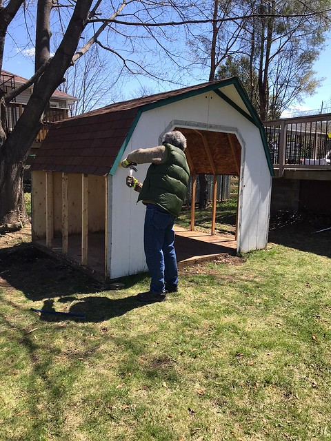 Carleton Place  - dismanteling shed