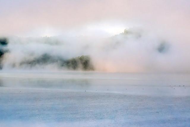 Mist Rising at Lake Baroon.