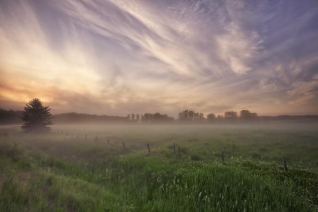 Lever du jour avec brume . On Explore 13/07/2020 # 12