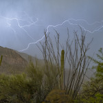 11. Juuli 2020 - 20:03 - Blowing wind, driving rain and lightning in Tucson AZ foothills