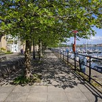 Shady pathway at Preston Marina