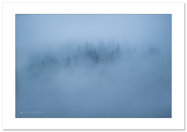 Full on mist