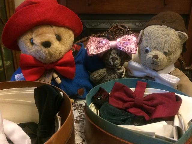 Paddington, Scout and the Collar Boxes 3.