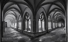 Cloître de l'Abbaye d'Ambronay by Laetitia.p_lyon