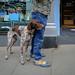 """<p><a href=""""https://www.flickr.com/people/andydarbs/"""">Andy..D</a> posted a photo:</p>  <p><a href=""""https://www.flickr.com/photos/andydarbs/50103882408/"""" title=""""Dog_""""><img src=""""https://live.staticflickr.com/65535/50103882408_905e1d993d_m.jpg"""" width=""""240"""" height=""""170"""" alt=""""Dog_"""" /></a></p>"""