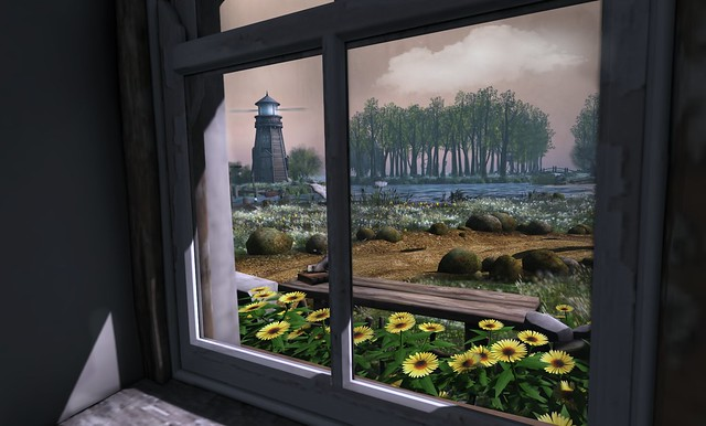The window view